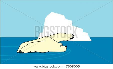 Iceberg and swimming polar white bear