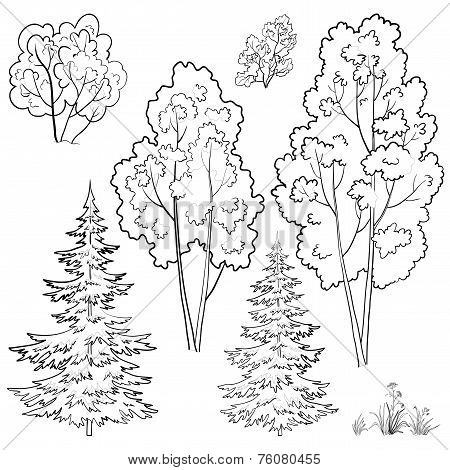 Plants, set, outline