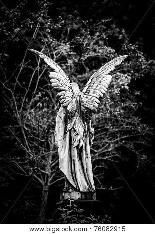 Angel Gravestone Full Length Back View In Black And White