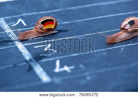 Snails Race Metaphor About Germany Against Usa