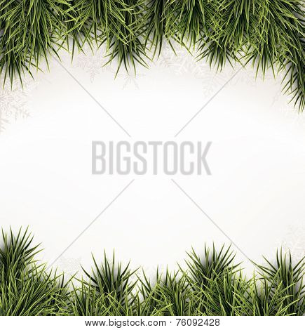 Winter abstract background with spruce twigs. Christmas vector frame. Eps10.