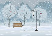 stock photo of tit  - Silent falling of snow in the park with various birds - JPG