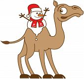 pic of hump  - Cute Christmas snowman with red scarf and Santa hat melting while seated between the two fatty humps of the back of a very surprised and worried brown camel - JPG