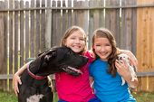 pic of great dane  - Twin sisters puppy pet dog and great dane playing together - JPG