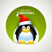 image of merry chrismas  - Merry Christmas celebration with cute cartoon of penguin in Santa cap on grey background - JPG