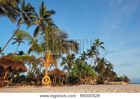 White sand and palm trees on a tropical beach of Zanzibar island