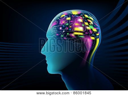 Electric Brain Activity In A Human Head
