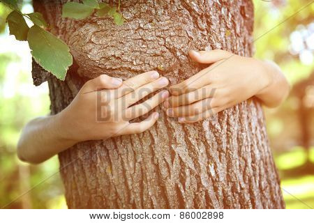 Child's hands hugging a tree.  Instagram effect.