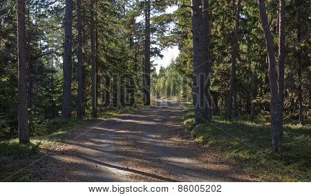 Nordic trail, travel on foot or bike in Sweden.