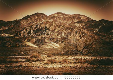 Inhospitable Landscape