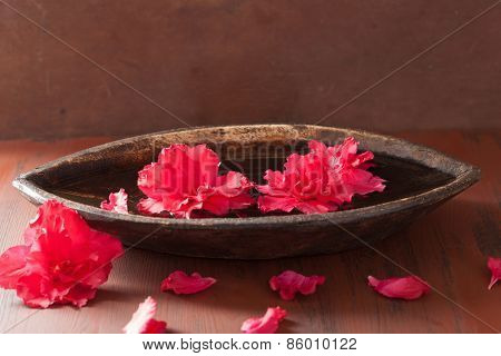 azalea flowers in bowl for aromatherapy spa