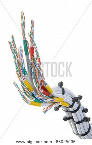 Computer network cables with cable ties
