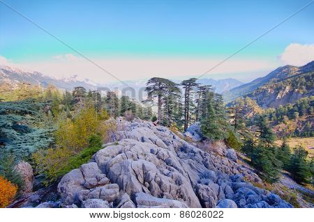Soothing Mountain Rock  Summer Wonderful View