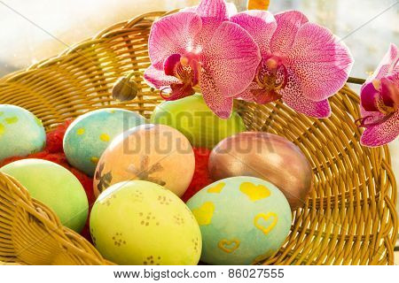 Easter eggs next to a pink Orchid