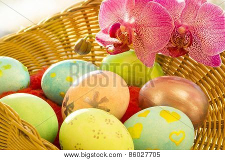 basket with Easter eggs and Orchid close