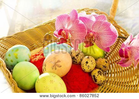 Easter and quail eggs in a wicker basket with Orchid