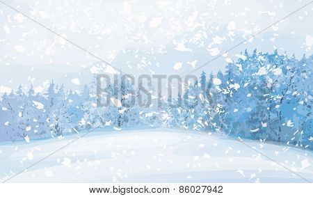 Vector winter  forest background.