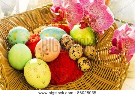 Easter and quail eggs in a wicker basket with Orchid, soft light