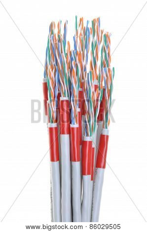 Computer network cables