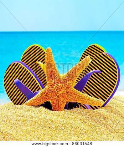 Flip Flops And Starfish On The Sand Near The Ocean