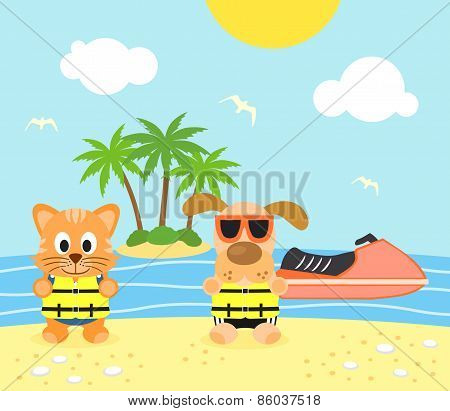 Summer background with dog and cat on the beach