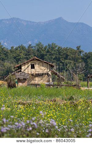 Traditional Taru House In Bardia, Nepal