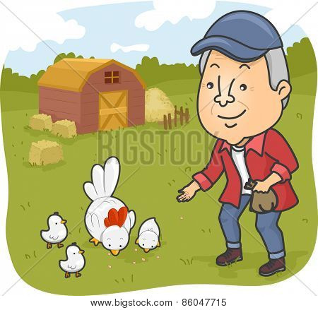 Illustration of a Senior Citizen Feeding Chickens in a Farm