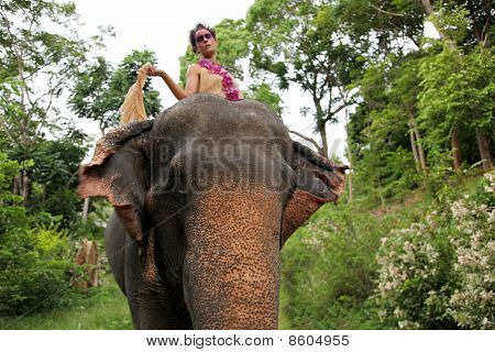 Model And Elephant.