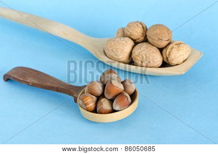 Healthy Food Hazelnuts And Walnuts In Wooden Spoons