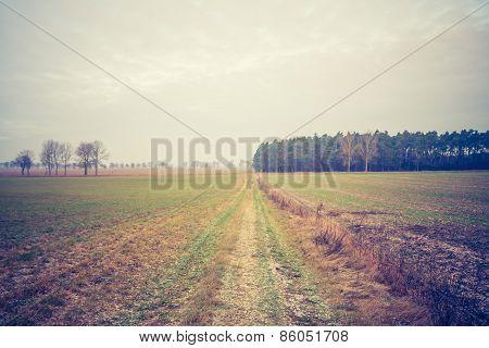 Vintage Photo Of Rural Raod