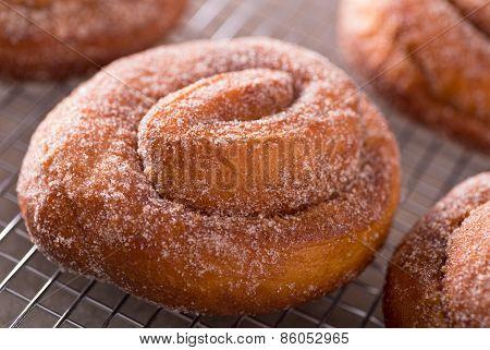 Cinnamon Swirl Donuts