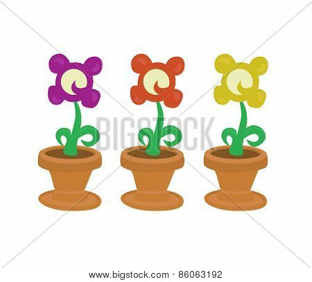 Isolated collection of cute flowers in pot