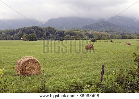 Field Of Hay Bales In The Country