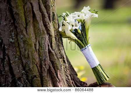 White wedding bouquet with callas