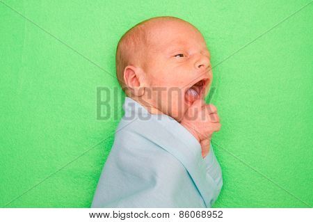 Newborn Baby Laying On Green Cover