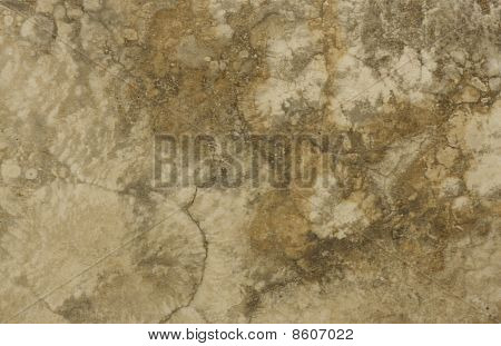 Surface Of The Travertine. Brown And Light Brown Colours.