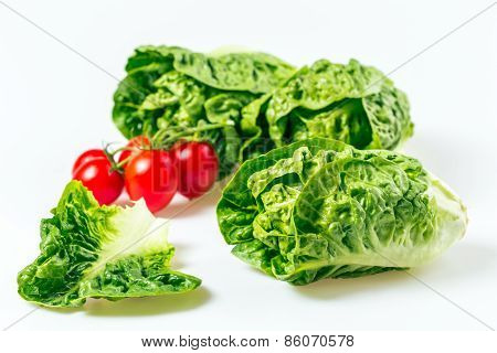 Red Tomato And Green Salad On White Background