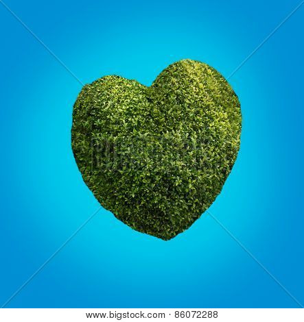 Heart made of plants