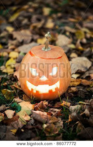Halloween Jack-o-lantern On Autumn Leaves