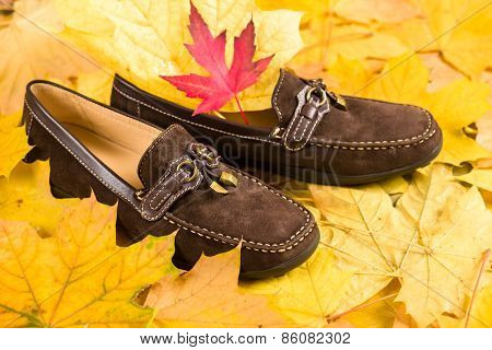 shoes on autumn leaves background