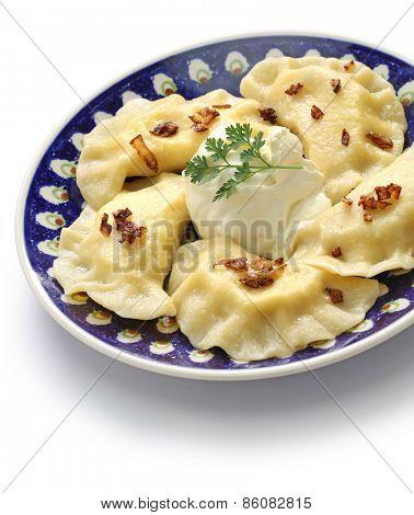 homemade pierogi dumplings, polish food isolated on whte background