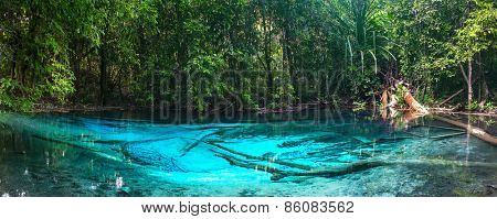 Emerald blue Pool. Krabi, Thailand. Amazing blue water in the beautiful lake at the forest