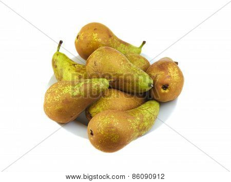Small group of conference pears on a white background