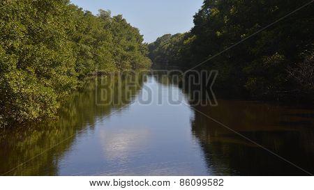 The Nariva River