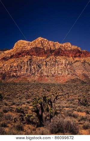 Mountains of Red Rock Canyon Conservation Area 4