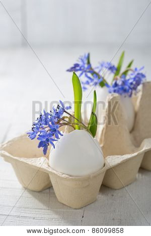 Bunch of  early spring   flowers ( Scilla siberica) in eggshells.  Shallow depth of field, focus on near flowers. Easter decor