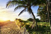 pic of lifeguard  - Colorful Lifeguard Tower in South Beach Miami Beach Florida USA - JPG