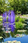 image of lillies  - Glass sculpture in blue lake with lilly pads - JPG