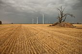 picture of wind-farm  - wind farm on farmland a stormy day - JPG