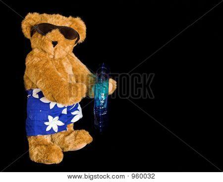 Beach Teddy Bear